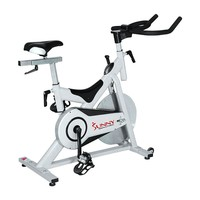 Sunny Health & Fitness Magnetic Indoor Cycling Bike (Grey)