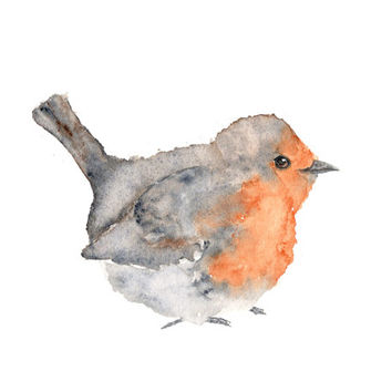 Watercolor painting, watercolor bird painting, bird art, animal illustration, bird print, English robin, grey, orange, rustic - 10X8 print