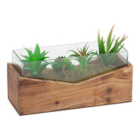 Glass Terrarium - Artificial Plants - T.J.Maxx