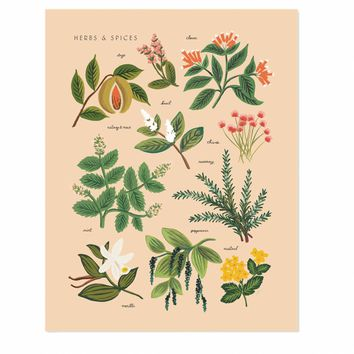 Herbs & Spices Peach Art Print by RIFLE PAPER Co. | Made in USA