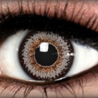 ColorNova Grey - ColorNova - Colored Contacts by ExtremeSFX