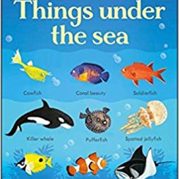 199 Things Under the Sea (199 Pictures) Board book