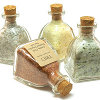 Flavored Sea Salt Set- 4 Gourmet Sea Salt Blends in Mini Pyramid Bottle, Gift Set, Sampler