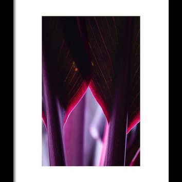 Purple Flower - Framed Print