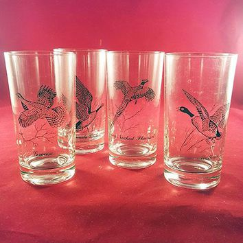 Vintage Sportsman Highball Cocktail Glasses  S/4
