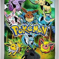Eevee Pokemon Fleece Blanket - Spencer's