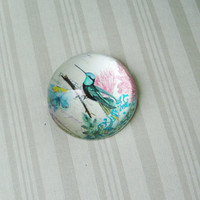 Vintage bird paperweight, glass paper weight with retro graphics and exotic bird, domed glass paperweight with blue bird and pink flowers