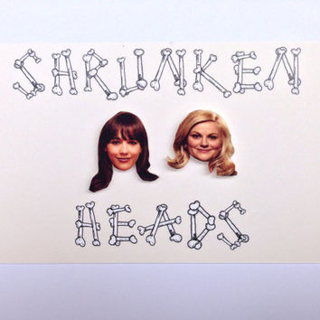 Ann Perkins and Lesley Knope Parks and Recreation earrings