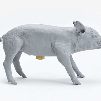 Reality Bank in the Form of a Pig