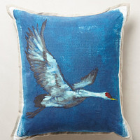 Avian Flight Pillow