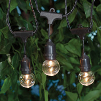 15-Count LED Commercial Style Globe Lights
