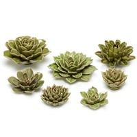 Succulent Wall Sculpture Set
