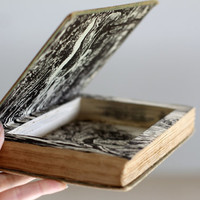 Hollow Book Jewelry Box With Beautiful Brown and White Illustrations, Buff: A Collie, Secret Compartment Book, Book Safe, One of a Kind