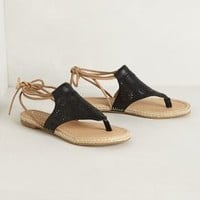 Surfeit Sandals by Koolaburra Black