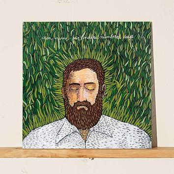 Iron & Wine - Our Endless Numbered Days LP