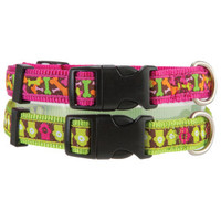 Top Paw® Roxie Collection Adjustable Collars - New Puppy Center - Dog - PetSmart