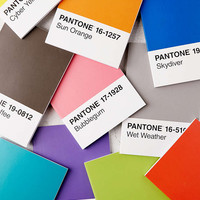 Pantone Notebooks Set - Urban Outfitters