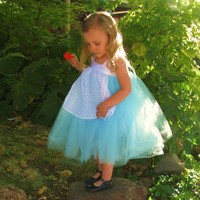 Alice in Wonderland Tutu Dress with White Lace by lilyannaforgirls