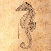 Vintage Style Nautical Art Print - Seahorse on Tea Stained Paper