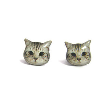 Cute Short hair Cat Kitten Stud Earrings - A14E84