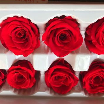 2-3CM Head,24PCS Mini Dry Natural Fresh Preserved Rose,Beauty And The Beast Rose,Forever Roses Heads For Wedding Favors And gift