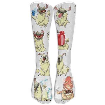 Christmas Llama Novelty Cotton Knee High All-Over Printed Socks