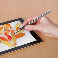 The iPad Paintbrush