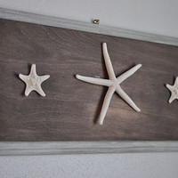 Starfish Beach Decor - Framed Starfish - Sea Art - Framed Sea Life - Starfish Decor - nautical nursery - beach decor- Beach Cottage Decor