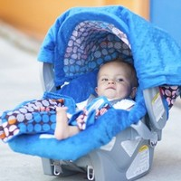 Aiden Whole Caboodle Carseat Canopy, Carseat Cover