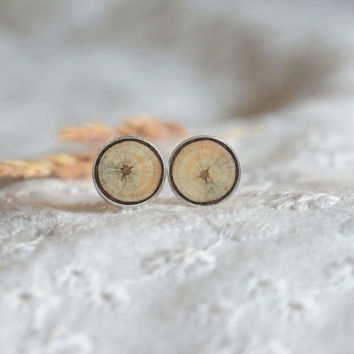 Wood in silver earrings, circle round wooden ear studs, sterling silver and wood jewellery in gift box, earrings in wooden jewelry box