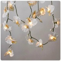 White Orchid String Lights | The Beauty Closet