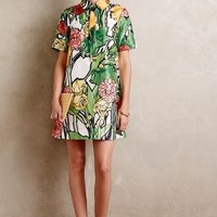 Botanist Shirtdress