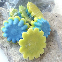 Sun & Sea Palm Candles - (6) One ounce Tarts/Melts