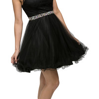 Lace Applique Jewel Neck and Waist A-line Sweet Sixteen Dress Black