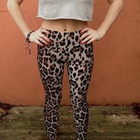 Leopard print leggings  from hayley1994