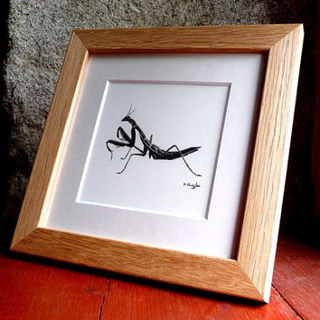 Mantis original charcoal sketch by ggsarts on Etsy