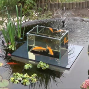 Flying Aquarium Fish Observatory floating tank garden pond KOI Goldfish over water surface 2500 grey