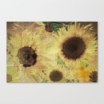 Wallflowers Canvas Print by Theresa Campbell D'August Art