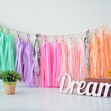 Tissue Paper Tassel Garland - pastel rainbow party