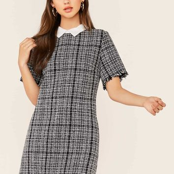 Contrast Collar Frayed Edge Tweed Dress