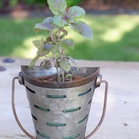 Small Flared Olive Bucket