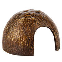 All Living Things® Coconut Shell Reptile Ornament | Habitat Decor | PetSmart