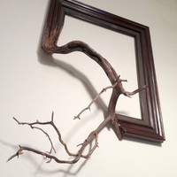 "Wood frame with grafted manzanita branch - ""Oscar"""