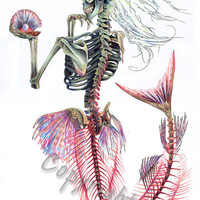 Mermaid Skeleton Print - 8x10