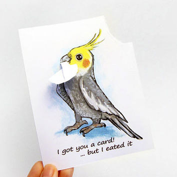 Cockatiel Card, Custom Card, Funny Greeting Card, Pet Bird Art, Thinking of You, Personalized Card, Anniversary Card, Happy Birthday