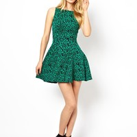 Closet Fit and Flare Dress in Rose Jacquard