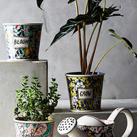 Take Root Gardening Collection