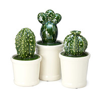 Cacti Canisters - Set of 3 | Decorative Canister Sets
