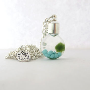 Living Terrarium Necklace - Marimo Moss Terrarium - Miniature Moss Ball - Aquatic Pet - Live Moss