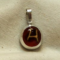 Harmony pendant Viking rune Hagalaz unique natural picture agate sterling silver handmade jewelry for men or women